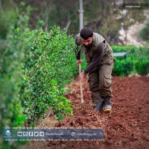 عامل في ورشة الزراعة بمعبر باب الهوى - سوريا