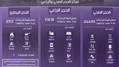 Photo of إنفوغرافيك يوضح إحصاءات عمل معبر باب الهوى خلال شهر تشرين الثاني لعام 2019.